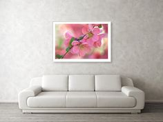 Jenny Rainbow Fine Art Photography Framed Print featuring the photograph Pink Spring Marvels by Jenny Rainbow Framing Photography, Fine Art Photography, Fine Art Prints, Framed Prints, Hanging Wire, Home Art, Fine Art America, Marvel, Rainbow