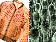 Biomimicry Fashion modeled from Biocouture-Bacteria