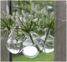 fleur blanche déco vase suspension