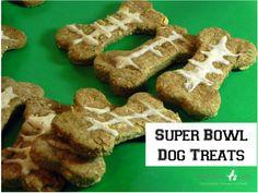 Denver Broncos vs Seattle Seahawks Super Bowl Animal Mascots