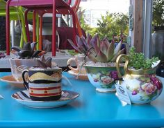 Succulent Tea Party at Flora Grubb Gardens love center pieces in teapots or cups for a party.