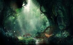 Fantasy Forest Ultra HD 4K Wallpaper Download High Quality