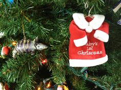 These are Sallie's two favorite ornaments: her Baby's 1st Christmas dress ornament, and of course, her Christmas armadillo (this is an ornament she picked when she was 2. still loves it.)