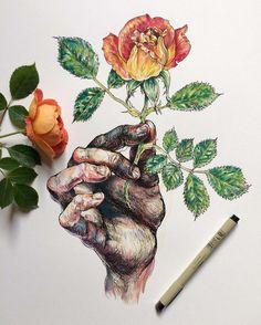 Hands and Flowers – Les illustrations poétiques de Noel Badges Pugh (image)