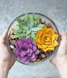 Indoor gardens that'll never die! DIY fabric succulents tutorial