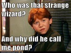 LOL, love it. xD All gingers are Ponds. Thats good for me. I want to be a pond. pond = doctor. doctor = ginger happiness