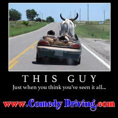 Our Texas defensive driving course is state approved for all courts in Texas, is the Lowest price by law,and includes same Day Certificate Processing. Driving Humor, Bulls On Parade, Driving Courses, Car Jokes, Cool Captions, Funny Thoughts, Online Courses, Thinking Of You