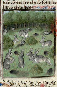 Le livre de la chasse fait et compilé par Gaston, qui jadiz fu conte de Fois, seigneur de Bearn Cote : Ms 3717 Date : Milieu du XVe siècle Langue : français