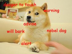 I braved 4chan for 2 weeks for some of these. This is Doge: The Criterion Collection - Imgur