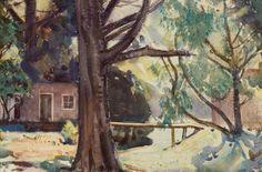 Wellington, New Zealand Bright Colours, Rear View, Impressionist, Art History, 1930s, New Zealand, Dates, Heaven, Pumpkin