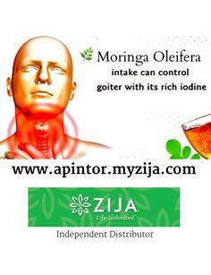 Moringa Oleifera Intake Can Control Goiter With It's Rich Iodine   Independent Distributor for Zija International   Visit www.apintor.myzija.com