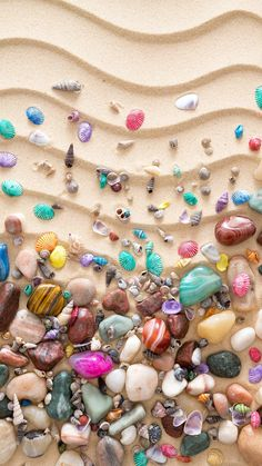Colorful Seashell On Sand iPhone 6 wallpaper