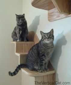 3Step Cat Stair from The Vertical Cat by TheVerticalCat on Etsy, $69.00