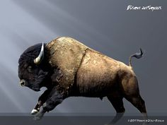Bison antiquus | Bison antiquus by ~ Dinogod, native to North America.  Became extinct around 10,000 years ago.  Was larger than the modern bison.  Weighed up to 3,500 lbs.  Appears to have been the ancestor of the modern bison.  Many Bison antiquus specimens are found in the La Brea Tar Pits in California.