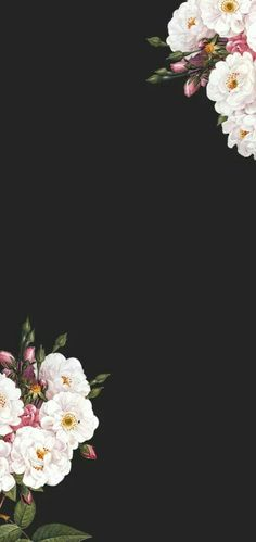 elcrochetdeita - A wallpaper for phone Flower Background Wallpaper, Flower Backgrounds, Phone Backgrounds, Wallpaper Backgrounds, Tumblr Wallpaper, Black Wallpaper, Screen Wallpaper, Aesthetic Iphone Wallpaper, Aesthetic Wallpapers