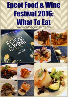 Epcot Food & Wine 20