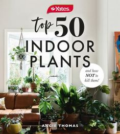 Bring the outdoors in and breathe new life to your home with plants! House plants are well and truly back on trend - they instantly lift an area, make a room feel fresh and welcoming, and brighten your mood. On top of this, indoor plants are great for purifying the air and creating a healthier home. Whether your style is jungle plants or succulents, you'll find something to suit. Benefits Of Gardening, House Plant Care, Gardening Books, Garden Guide, Skin Treatments, Houseplants, Indoor Plants, Color Splash, How Are You Feeling