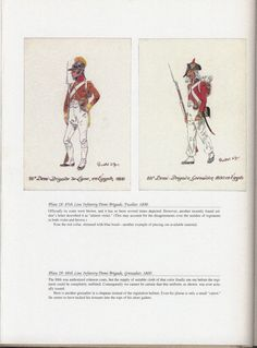Army of Egypt: Plate 28: 85th Line Infantry Demi-Brigade, Fusilier, 1800. + Plate 29: 88th Line Infantry Demi-Brigade, Grenadier, 1800.