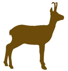 http://www.biodiversite-savoie.org/system/files/images/Illustrations/Chamois/silhouette_chamois.png