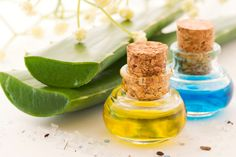 The Benefits Of Using Aloe Vera For Skin Care And More