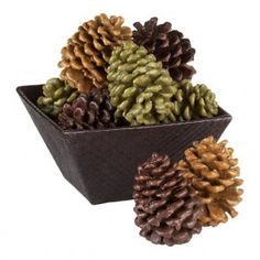 Scented Pinecone Fire Starters