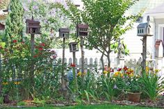 Calling All Birds (and Butterflies!)  Cottage gardeners invite wildlife into their yards with feeders and birdhouses for birds, and with pla...