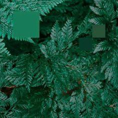 Nebraska - Metaphor To The Floor EP (Heist Recordings) #music #vinyl #musiconvinyl #soundshelter #recordstore #vinylrecords #dj #House