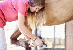 Horse Care By the Day,Week, Month and Year - Checklists for You: Hoof clean daily.