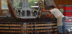 Pressoir Coquard (1004×482) Champagne, France, Wine Press