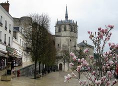 Amboise - This town, host to da Vinci in his later years, retains its Italian Renaissance influence with its royalcastle and gardens.