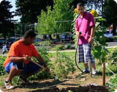 Vancouver WA Community Gardens    Baxter & Baxter, LLP  1101 Broadway Street, Suite 213  Vancouver, Washington 98660  (360) 574-5239
