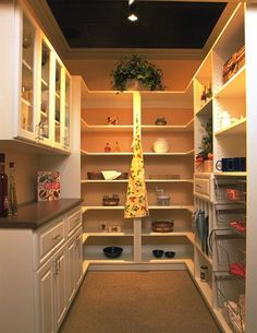 Walk-In Pantry with Prep Area! Love it.