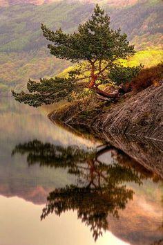 Beautiful ... #Photo #Photography #Nature #NaturePhotography #Landscapes #Sunsets