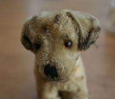 Cute little puppy Cute Little Puppies, Small Puppies, Dogs And Puppies, Puppy Love, Toy Dogs, Vintage Teddy Bears, Vintage Dog, Bear Doll, Antique Toys