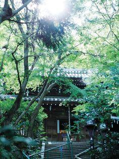 【長楽寺宿坊 遊行庵 (ちょうらくじしゅくぼう ゆぎょうあん)】ご住職が自らおもてなし|京都観光