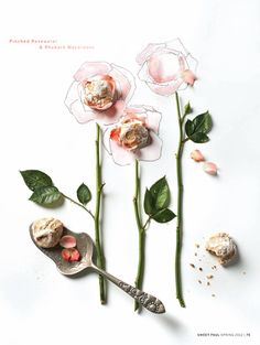 Pinched Rosewater & Rhubarb macaroons /Sweet Paul
