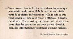 Aurochs Rouge - Chimeterre T1 par Tibéon Citation 09