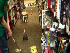 Miniature golf at Menomonie Public Library