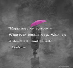 Buddha Quote 60 by h.koppdelaney, via Flickr