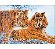 Home & Garden Dependable Needlework Full Embroidery Painting Cross Stitch Animal Diy Diamond Painting Kits Cross Stich Round Diamond Painting Cat Queen Suitable For Men And Women Of All Ages In All Seasons