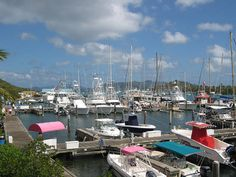 Red Hook port is a hotspot for ferrying from St. Thomas to St. John, but more importantly, partying! St Thomas Virgin Islands, Us Virgin Islands, Vacation Trips, Vacation Spots, Vacations, St Thomas Usvi, Water Island, Places To Go