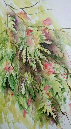 Japanese Maple Leaves - watercolour