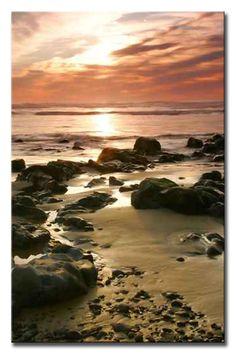 2551823 / Cuadro Retrato de la costa de Oregon