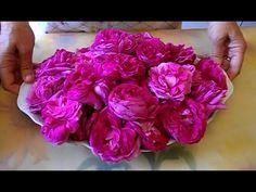 Reteta dulceata de trandafir
