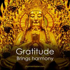 Choose to live in gratitude rather than consumed with regrets.  www.myinnermaster.com Inner Strength, Regrets, Gratitude, Buddha, Spirituality, Bring It On, Statue, Live, Movie Posters
