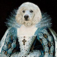 [Queen] Anna of Austria Pet Custom Portrait Canvas Wraps Pet Costumes, Unique Animals, Cat Collars, Pet Memorials, Cat Gifts, Pet Portraits, Funny Dogs, Cat Lovers, Wrapped Canvas