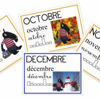Les mois de l'année Petite Section, Alpha Bet, Cycle 1, Science, Album, Days Of Week, Calendar, School, Ideas