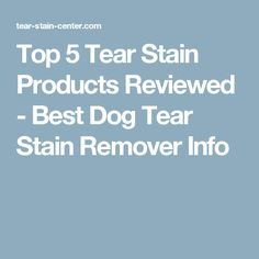 Top 5 Tear Stain Products Reviewed - Best Dog Tear Stain Remover Info