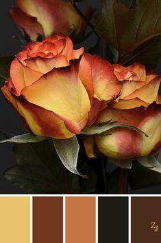 ZJ Colour Palette 223 #colourpalette #colourinspiration
