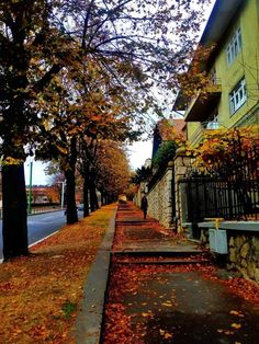 Brasov Romania, Romania Travel, Autumn Scenes, Mountain Resort, Modern City, Best Cities, Where To Go, Travel Photos, The Good Place